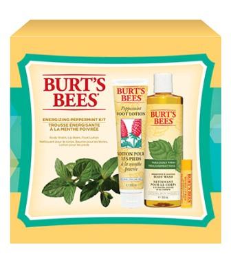 Burts Bees EnergyMint_Kit_xl