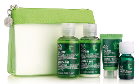 tea-tree-skin-care-kit